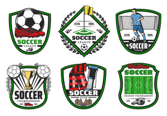 Soccer or football sport league championship label
