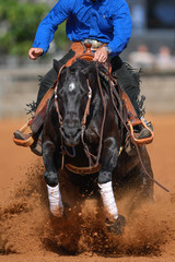 The front view of a rider in jeans, cowboy chaps and blue shirt on a reining horse slides to a stop in the red clay an arena.