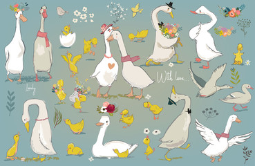 Wall Mural - set with cute farm birds