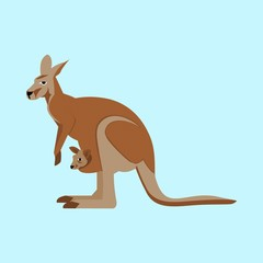 icons about Animal with kind, white, pocket, wallaby and zoo