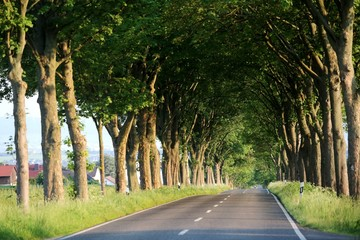 Straße Fuldatal