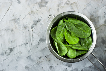 Washed spinach in a metal colander on a gray background. Fresh green leaves for cooking healthy dishes