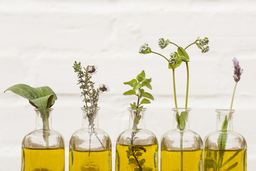 Bottle of essential oil with herbs set up on white background