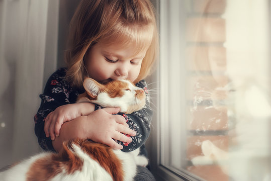 A small cute child with naked hair gently embraces a red fluffy cat