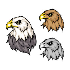set of eagles. Bald eagle logo. Wild birds drawing. Head of an eagle. Vector graphics to design.