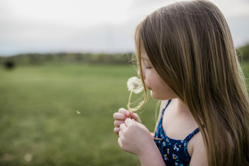 Side view of girl with dandelion flower on grassy field