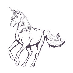 Unicorn. Hand drawn unicorn. Fantasy world. Vector artwork.