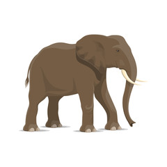 Elephant animal icon of african savanna mammal
