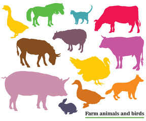 Colorful farm animals and birds silhouettes