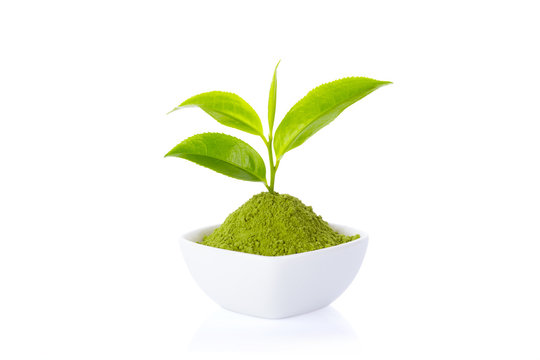 Powder green tea in cup and green tea leaf on white background