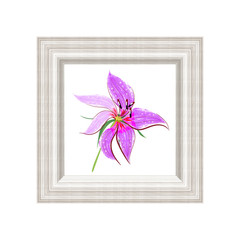 Vector illustration of a picture of a decorative pink flower in a striped frame imitation of a watercolor handmade