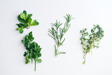 Fresh herbs on white background: rosemary, thyme, mint and parsley in small bunches isolated
