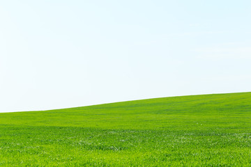Poster Heuvel beautiful Green field