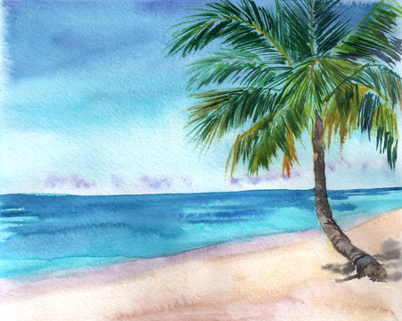 Hand drawn tropical background. Seascape with sea, sand beach, palm. Idyllic view. Illustration