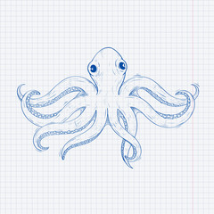 Octopus. Hand drawn sketch on lined paper background