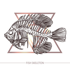 Fish Skeleton. Hand Drawn Sketch Style. Fish On The Geometric Background. Fashion Print And Hipster Poster