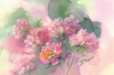 rose light peonies watercolor background