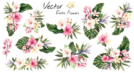 set Tropical vector flowers. card with floral illustration. Bouquet of flowers with exotic Leaf isolated on white background. composition for invitation to party or holiday Wall mural