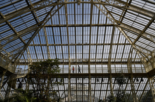 People walk inside the newly restored Victorian Temperate House which has been re-opened to the public following a five year restoration programme in Kew Gardens, London, Britain