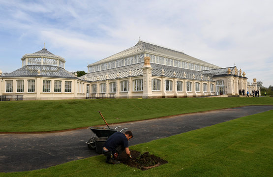 A gardener works in front of the newly restored Victorian Temperate House which has been re-opened to the public following a five year restoration programme in Kew Gardens, London, Britain