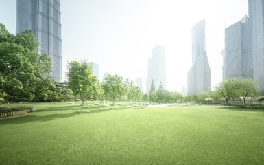 Fotomurales - park in lujiazui financial center, Shanghai, China