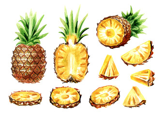Pineapple elements set. Watercolor hand drawn illustration,  isolated on white background