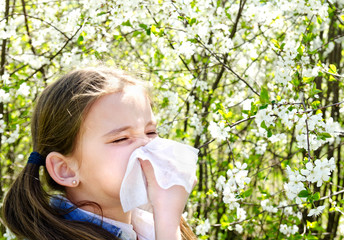 Little girl has allergy to spring blossoming and blowing her nose