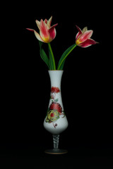 Beautiful  tulips in n elegant vase on white background