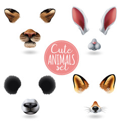 Cute Animal Faces Icon Set