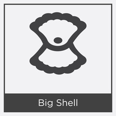 Big Shell icon isolated on white background