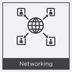 Networking icon isolated on white background