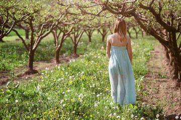 Woman walking in a orchard
