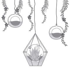 Mini garden in crystal glass