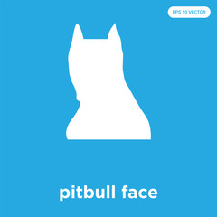 pitbull face icon isolated on blue background