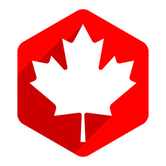 Canadian maple leaf on hexagon shape in flat style