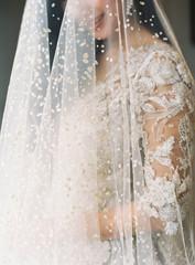 Romantic Bride under Veil