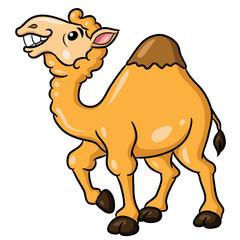 Camel Cute Cartoon Illustration of cute cartoon camel.