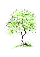 Watercolor summer landscape. Green tree on a bright grass. On a white background. Summer tree on a background of abstract green spots, a splash of paint. Logo, postcard, element for design.