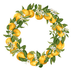 Citrus orange tree ornament wreath with fruits, flowers and leaves on the branches in bright vector illustration drawing