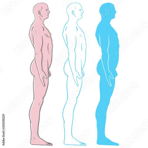 Outline silhouette of male body. Caucasian model man in underwear ...