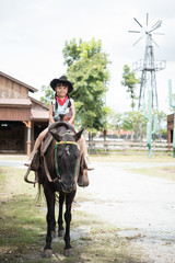 horseback riding,  lovely cowgirl is riding a pony