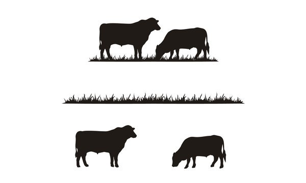 Cattle Angus Cow & Grass silhouette livestock farm logo design