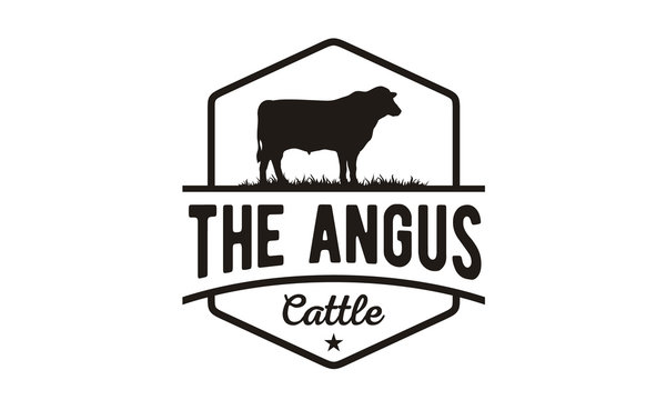 Retro Vintage Cattle Angus Beef Emblem Label Livestock logo design vector