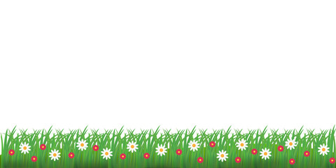 Spring grass and flowers border. Vector illustration.