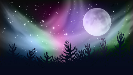 Abstract Forest Multicolored Northern Lights Aurora Borealis Sky