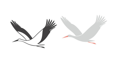 Stork set. Isolated stork on white background