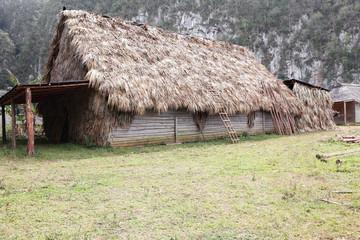Traditional Cuban tobacco drying hut, Vinales, Cuba