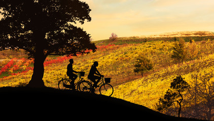 Young couple riding bicycles at sunset