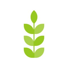Branch with leaves flat design icon