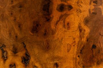 Wall Mural - Walnut wood decorative furniture surface